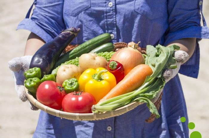生産者と野菜